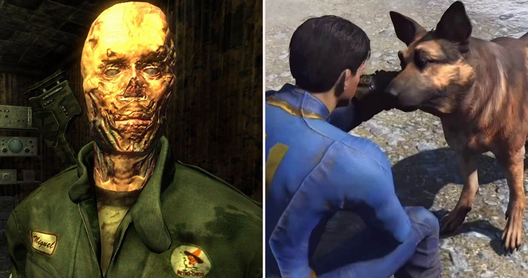 Fallout: 7 Best Companions Of All Time And 8 Of The Worst