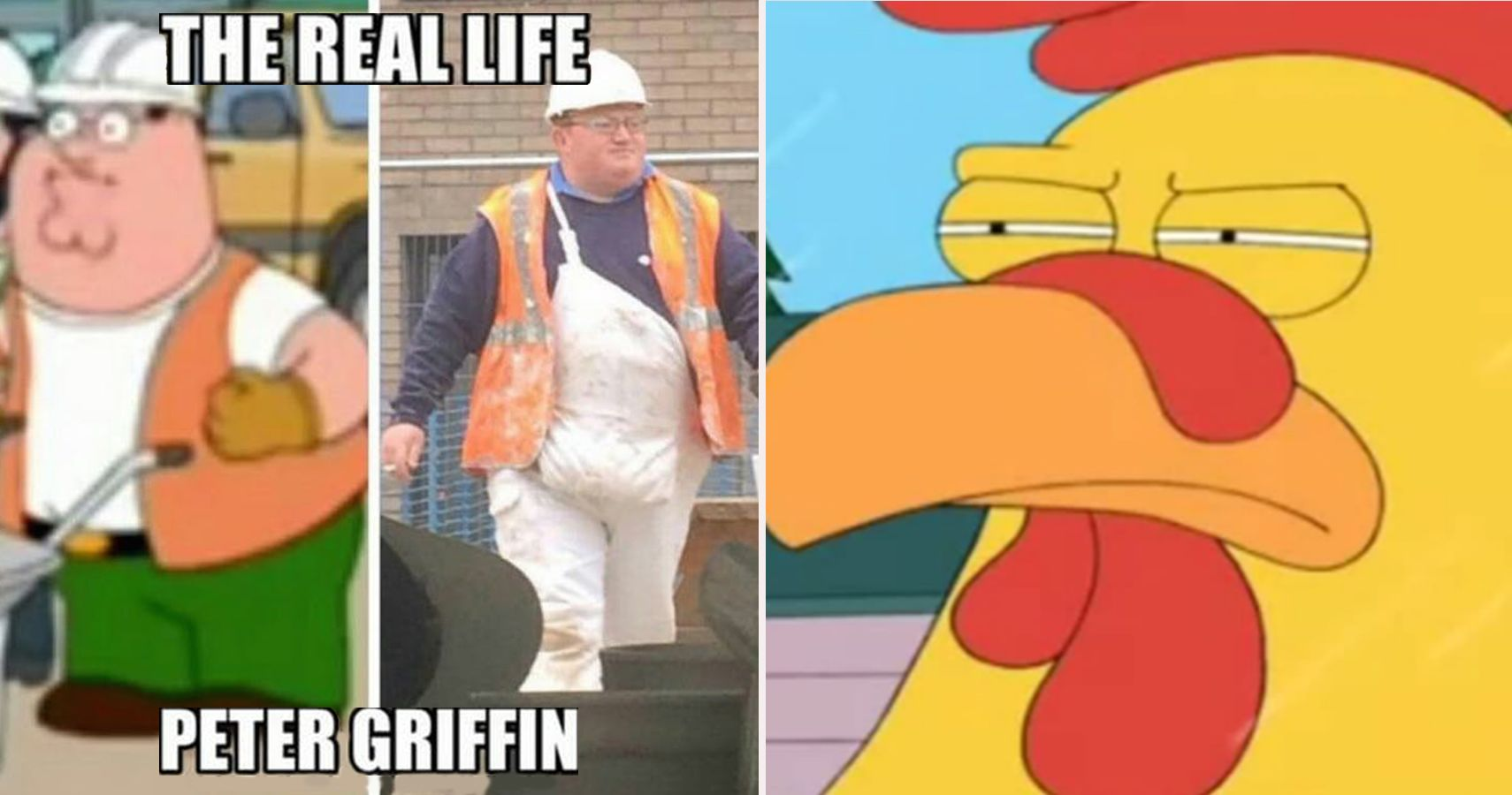 20 Hilarious Family Guy Memes That Would Make Even Stewie Laugh