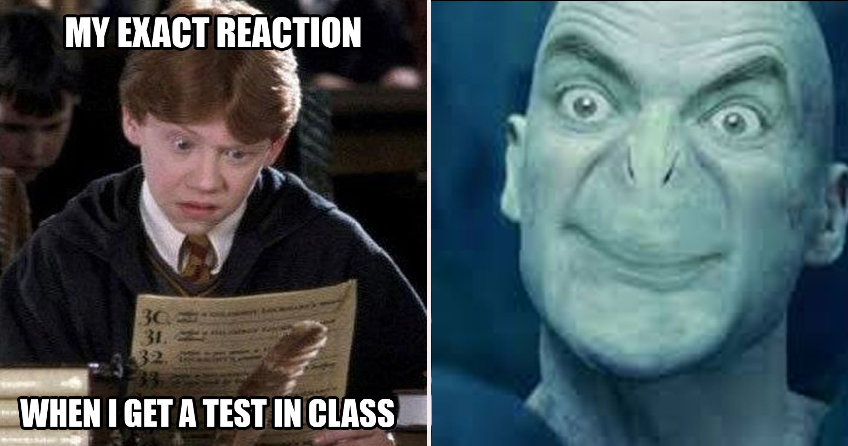 Funny Harry Potter Memes Voldemort : Hilarious harry potter memes that will leave you laughing
