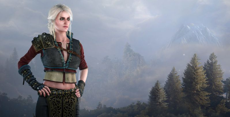 10 The Witcher Characters Sorted By Their MBTI® | TheGamer