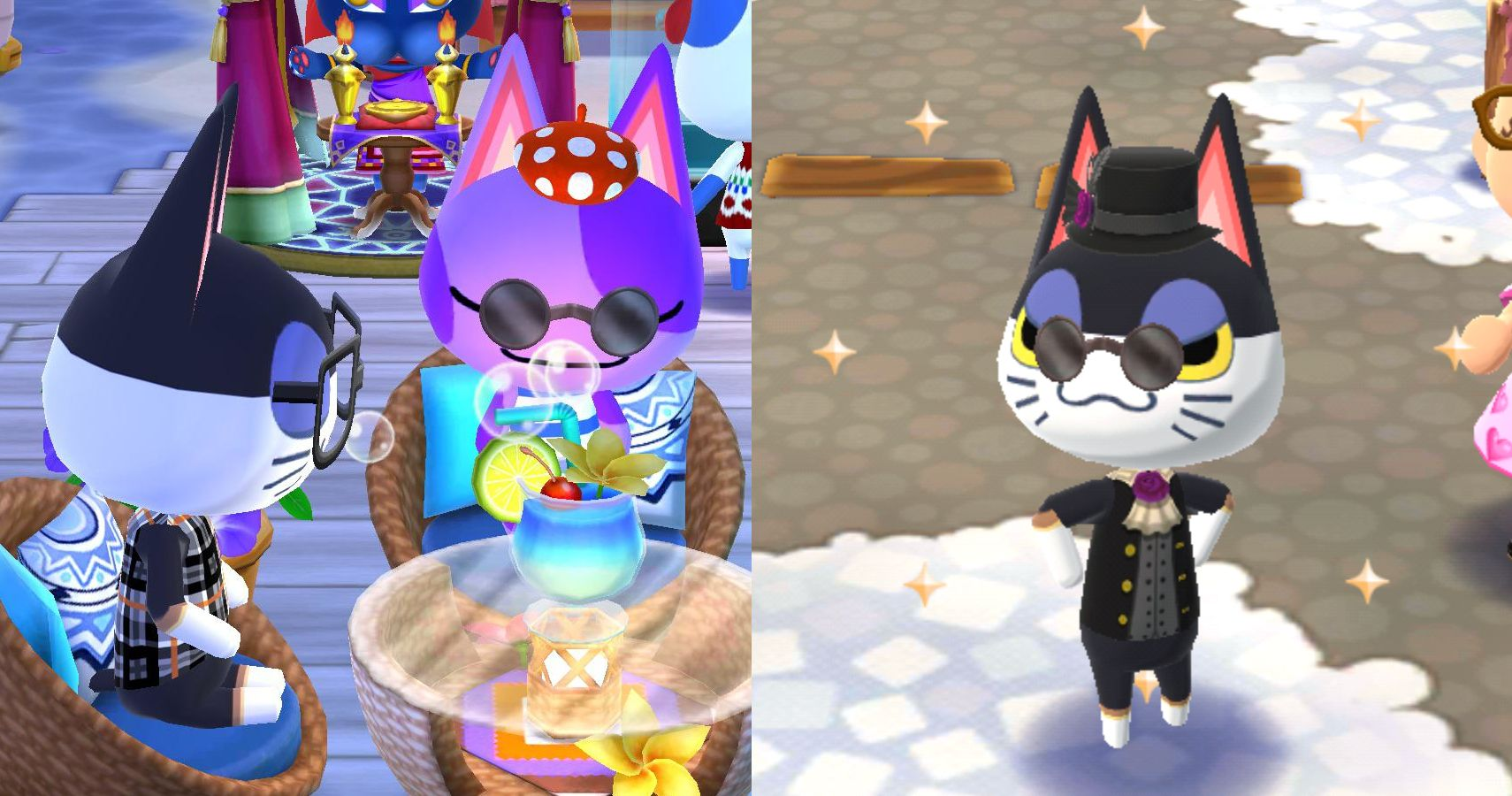 Animal Crossing 14 Things You Didn T Know About Punchy